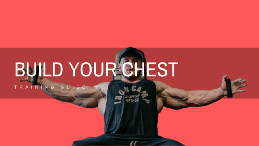 Chest Workout Routine By Hunter Labrada